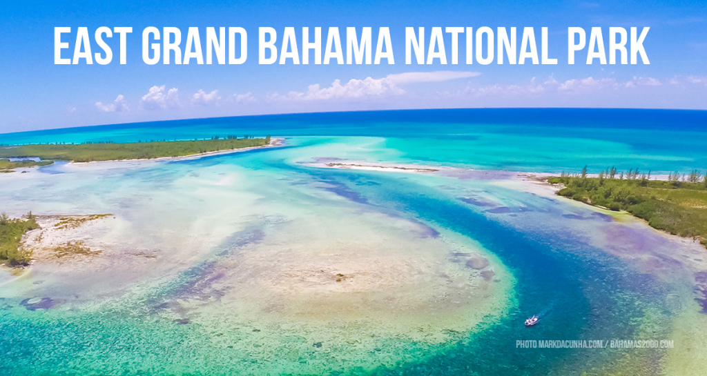 Preserve and Protect our Island Ecosystems by Supporting Grand Bahama Park Expansion Plans
